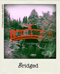 setas_bridge