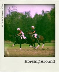 mitm_horse