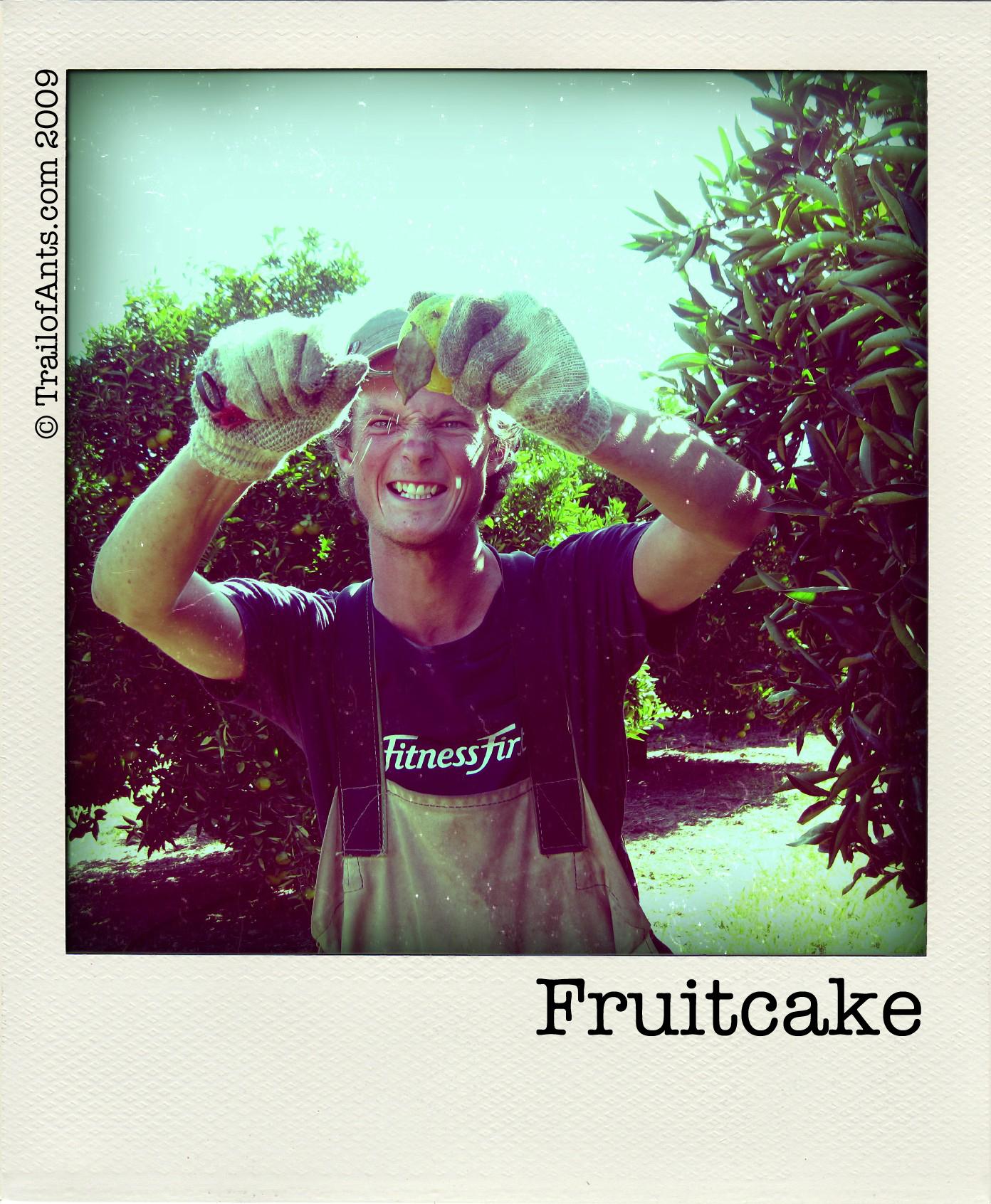 badfruit_stab