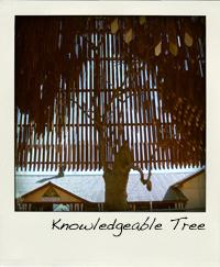 hth_treeofknowledge