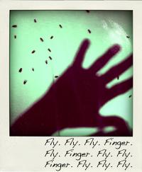 toa_fs_flyfngrfly