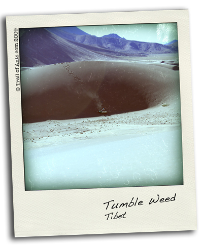 Tibetan San Dune
